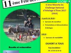 photo de FETE DES ANES